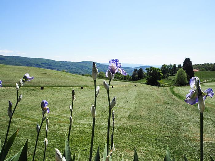 panorama_tuscany