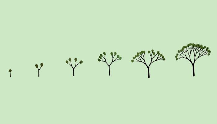 dibujar un árbol_crecimiento
